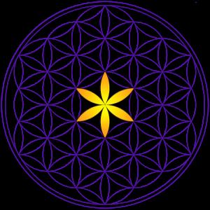 metaphysics university