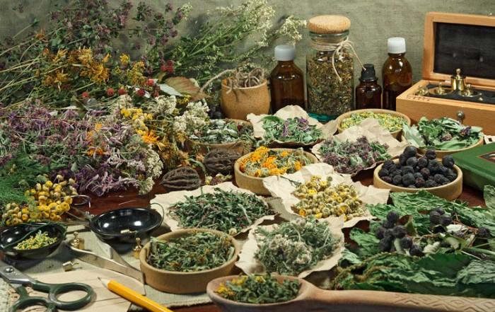 Display of dried medicinal herbs. Herbs: A Spiritual Approach