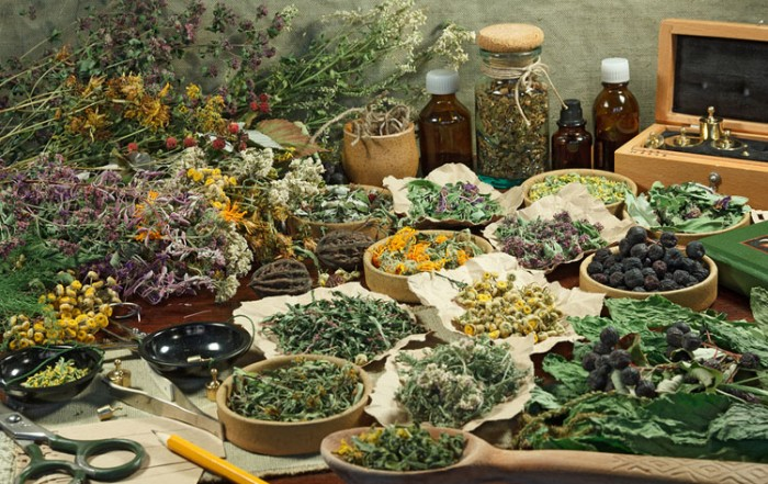 Display of dried medicinal herbs. Herbs: A Spiritual Approach